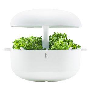 Smart-garden-tech-gift-ideas-2020